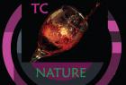 formation BTSA Technico-commercial spécialité boissons, vins et spiritueux